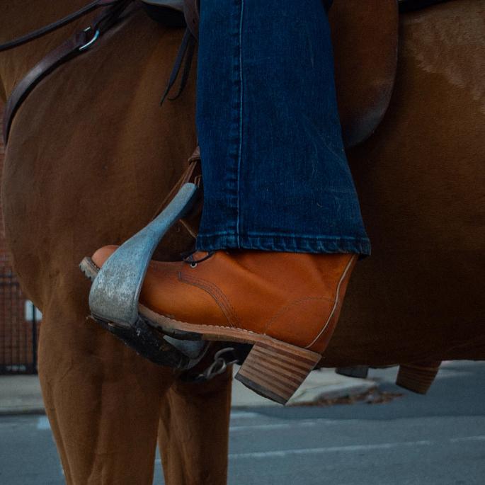 The Concrete Cowgirl